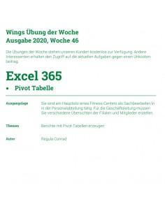 UdW 2046 Excel Pivot Tabelle